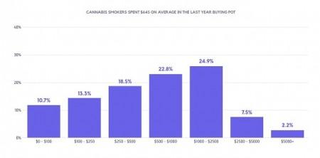 典型的な大麻ユーザーは年間でどの程度お金をかけているのか?1年間に645ドルの消費