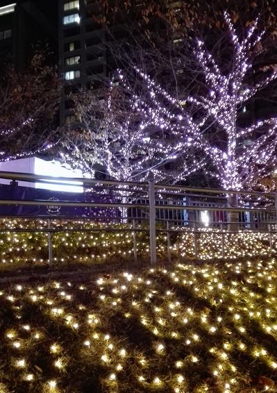 目黒川みんなのイルミネーション2017 五反田ふれあい水辺広場の芝生