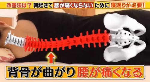 寝起きの腰痛と寝返りの回数 この差って何ですか? 横向き寝の背骨