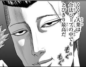 ドラマ 「紺田照の合法レシピ」 漫画原作 合法ハーブ大葉