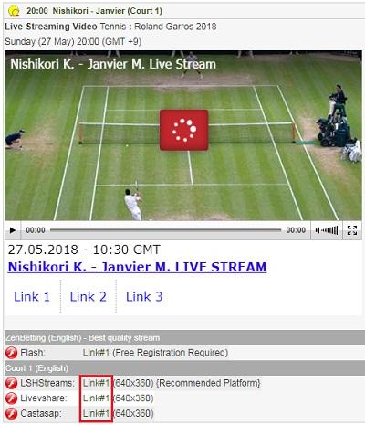 錦織圭、大坂なおみ、R・ナダル出場の全仏オープンの試合 視聴画面