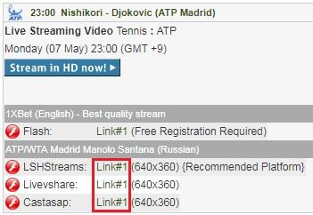 錦織圭、R・ナダル、N・ジョコビッチ出場のムチュア・マドリード・オープンの試合をネットのライブストリーミング放送で無料視聴するには
