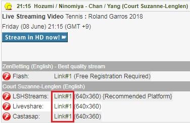 全仏オープン女子ダブルス 穂積絵莉&二宮真琴組の試合をネットのライブストリーミング放送で無料視聴するには