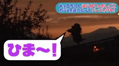 第24回 NHK「チコちゃんに叱られる!」暗闇のキョエちゃん「ひま~!」