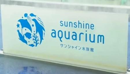 デートで使える池袋サンシャイン水族館の正しい鑑賞法。水族館プロデューサー・中村元が自ら解説