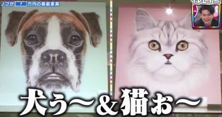 テレビ千鳥 SP 買い物千鳥 ノブの家具 KAREでド正面の犬ぅ~&猫ぉ~