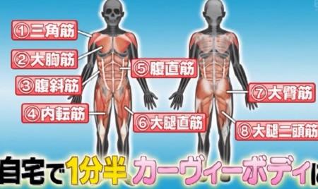第2弾はLUNA!有吉ゼミ紹介の武田真治筋肉ダイエット&筋肉リズム体操第二のやり方完全ガイド