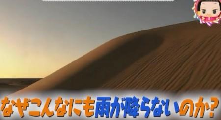 第70回 NHK「チコちゃんに叱られる!」なぜ砂漠はできる?チコっとクイズ動物の鳴き声