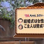 第81回 NHK「チコちゃんに叱られる!」大阪ではエスカレーターで右側に乗るのはなぜ?「結婚式は女性のもの」発言のチコちゃん