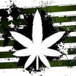 大麻とアメリカ国旗