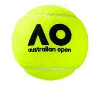 2017 全豪オープン テニスボール ロゴ