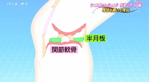 5月14日 TBS「バース・デイ」テニス界のレジェンド伊達公子46歳 現役を続ける理由 左膝半月板と関節軟骨の損傷