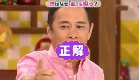 第19回 NHK「チコちゃんに叱られる!」岡村さんが久しぶりに正解(チコった)!VTRゲストに元総理・村山富市登場!