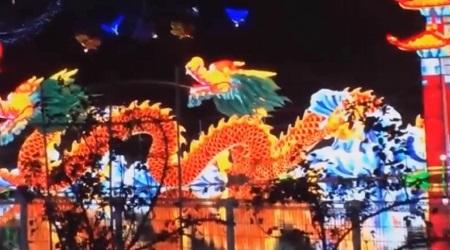 マツコ 東京ドイツ村 チャイナランタンフェスティバル 鯉の登竜門