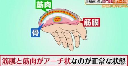 ヒルナンデスで紹介!ネット・本で話題の肩こり解消法6種を徹底検証 ポイントは鎖骨ほぐし・手の平・耳たぶ・肩甲骨・カベストレッチ 手首アーチ体操 手首の筋膜の構造