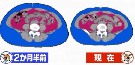 金スマ紹介の第2弾「やせ筋トレ」検証企画でスルーされていたウソホントを徹底解説。みはるの内臓脂肪ビフォーアフター
