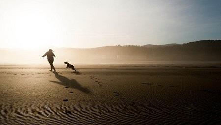 新型コロナウイルス感染拡大でランニングやウォーキング、ペットの散歩のリスクは?アメリカのケース