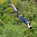 第89回 NHK「チコちゃんに叱られる!エールコラボSP」バンジージャンプはなぜ飛ぶ?お土産で木刀が売られる理由