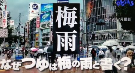 なぜつゆは梅の雨と書く?その漢字の由来は?第96回 NHK「チコちゃんに叱られる!」より