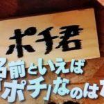 犬の名前といえば「ポチ」なのはなぜ?第95回 NHK「チコちゃんに叱られる!」より