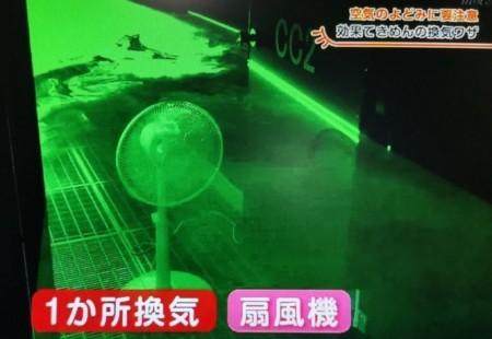 部屋の換気を超短時間で行う科学的な方法。最強の換気は扇風機とサーキュレーターの2台使い?扇風機の置く位置