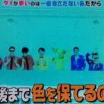 なぜ鯛の色は赤い?釣り好きなら知っているハズ?第97回 NHK「チコちゃんに叱られる!」より