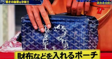 ホンマでっかTVで紹介!明石家さんまのカバンの中身とは?バッグinバッグは13番の番号付きでワイリーコヨーテデザイン