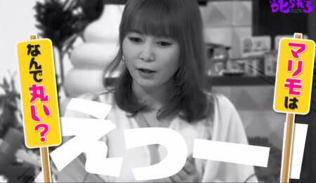 """マリモが丸いのは""""湖を制覇する""""ため?第100回 NHK「チコちゃんに叱られる!」より"""