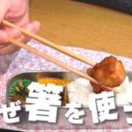 なぜ箸を使う?2本の棒は何の為?「チコちゃんに叱られる!」より