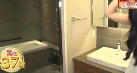 ダレノガレ明美の自宅 洗面所とお風呂