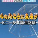 ビニール傘はいつから?作られたきっかけは?日本だけ?チコジェクトX「チコちゃんに叱られる!」