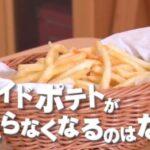 フライドポテトがやめられない・無性に食べたい理由は?「チコちゃんに叱られる!」