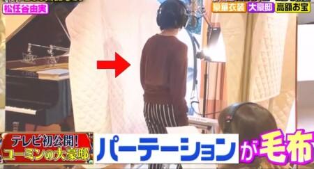 櫻井・有吉THE夜会 ユーミンの自宅写真 パーティションは毛布で代用