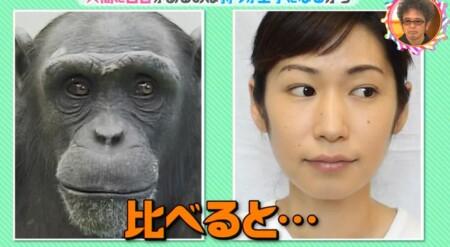 白目はなぜ白い?人間だけにある理由は?チンパンジーの黒い白目と比較「チコちゃんに叱られる!」