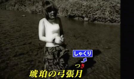プロボイストレーナーが選ぶ最も歌がうまい歌姫ランキングベスト15 第14位 aiko カブトムシ しゃくりのテクニック