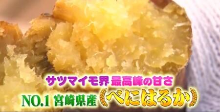三浦翔平&西川貴教の美味しい焼き芋日本一決定戦で紹介された7品種&1位に選ばれたのは紅はるか