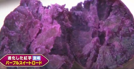 三浦翔平&西川貴教の美味しい焼き芋日本一決定戦で紹介された7品種 宮崎 パープルスイートロード