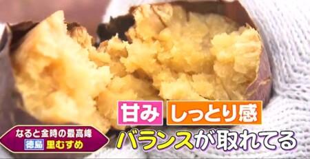 三浦翔平&西川貴教の美味しい焼き芋日本一決定戦で紹介された7品種 徳島 里むすめ