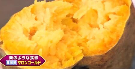 三浦翔平&西川貴教の美味しい焼き芋日本一決定戦で紹介された7品種 鹿児島 マロンゴールド