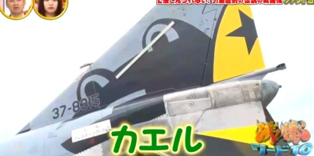 沸騰ワード カズレーザーが航空自衛隊で戦闘機F4ファントム搭乗 301飛行隊のカエルマーク