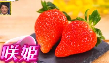 ザワつく金曜日 紹介されたお取り寄せ最高級イチゴ3種類 咲姫