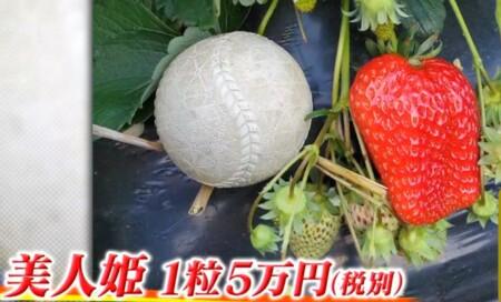 ザワつく金曜日 紹介されたお取り寄せ最高級イチゴ3種類 1粒5万円の巨大な美人姫