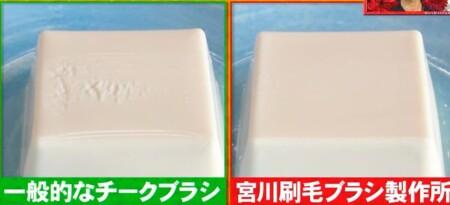 ホンマでっか 紹介された家庭でも使えるプロ仕様業務用グッズど全14種 宮川刷毛ブラシ製作所 チークブラシ 豆腐で比較実験