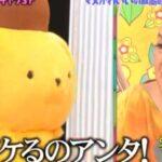 マツコの知らない世界 紹介されたサンリオキャラクター一覧 マツコとポムポムプリン