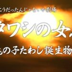 たわし(束子)はなぜ亀の子?亀の形の歴史や名前の由来は?チコちゃんに叱られる