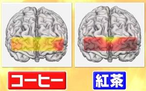林修の今でしょ講座 コーヒーvs紅茶vsココアを徹底比較!紅茶は脳の血流量アップで記憶力・集中力にプラス