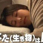 生物はなぜ眠る?睡眠はなぜ必要?チコちゃんに叱られる