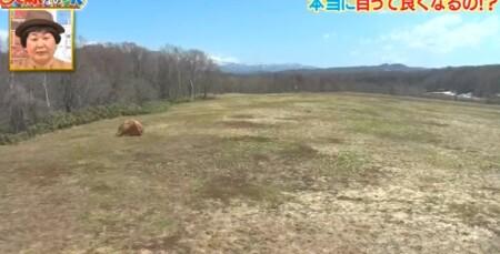 それって実際どうなの課 北海道の大自然で遠くを見続けると視力回復する?チャンカワイ検証結果 北海道の無いも無い土地