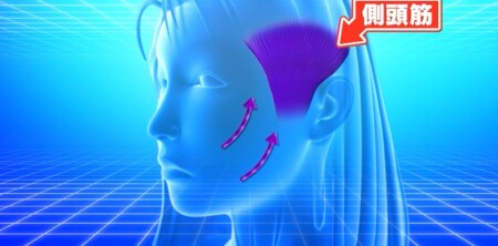 世界一受けたい授業 書籍「奇跡の頭ほぐし」顔3大たるみの原因は頭皮のコリ?ほうれい線が出来る原因は側頭筋