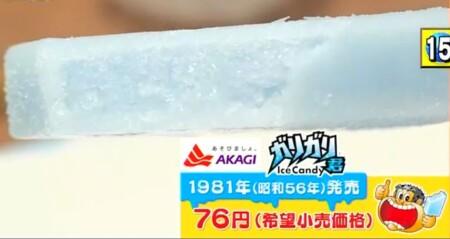 ニッポン視察団2021夏 外国人が選ぶ最強ジャパンスイーツランキングベスト40 第15位 ガリガリ君